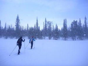 Ski Touring in Lapland