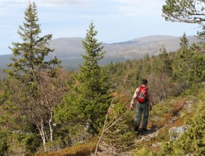 Autumn Hiking Week in Fell Lapland