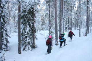 IMG_3821-Nuuksio-snowshoe