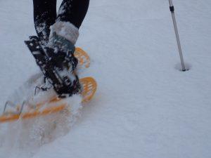 Lumikenkäretkellä Nuuksiossa Espoossa