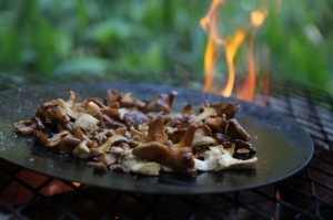 Making- Mushrooms on campfire