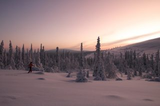 Midwinter ski tour in Lapland