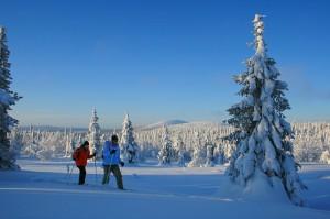 Lumikenkäretki Pallas-Yllästunturin kansallispuistossa
