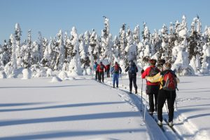 Ski Tour in Lapland