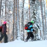 Winter Hiking in Nuuksio