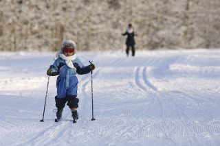 Cross-Country Skiing Exercise
