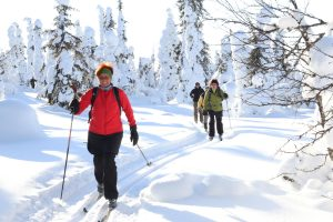 Cross-country skiing in Lapland, foto: Feel The Nature