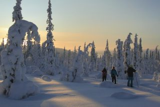 Keskitalven hiihtovaellus Tunturi-Lapissa