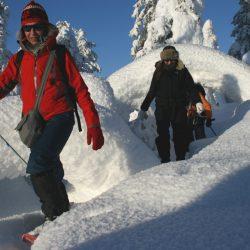 Lumikenkävaellus Tunturi-Lapissa