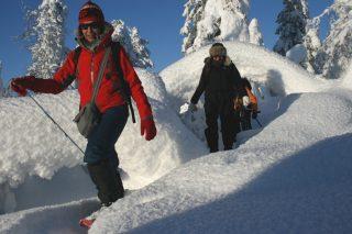 Snowshoe Tour Week in Lapland