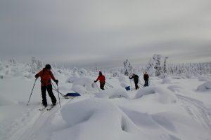 Midwinter ski tour with a sled