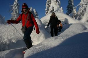 Snowshoeing lapland