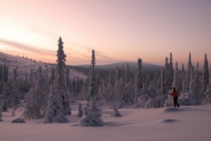 Midwinter-Ski-tour-in-Lapland