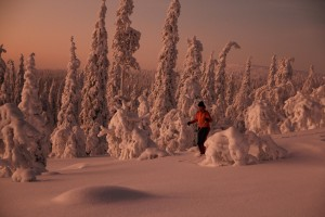 Skiing-in-Lapland-Mid-winter
